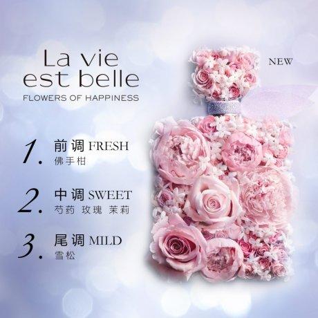 新品•美丽人生香水